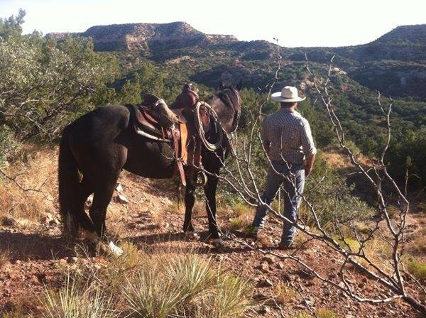 Matt Litrell The Long Trail Home