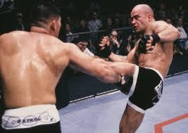 Bas Rutten MMA